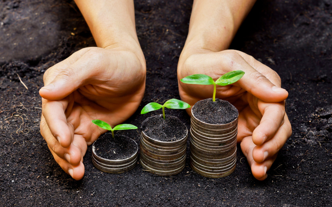 Le radici della Prosperità